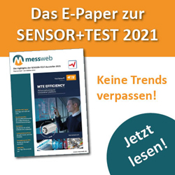 E-Paper messweb Sensor+Test 2021